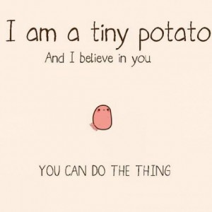 I am a tiny potato, and I believe in you. You can do the thing.